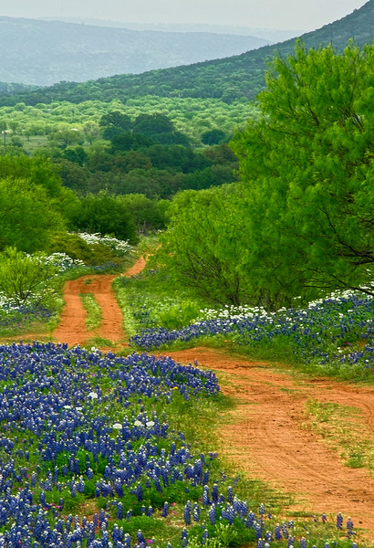 3167  Ranch-Road-To-Heaven-Vertical-_v1 copy