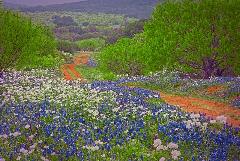 3129  A-Ranch-Road-To-Heaven-_v1 copy