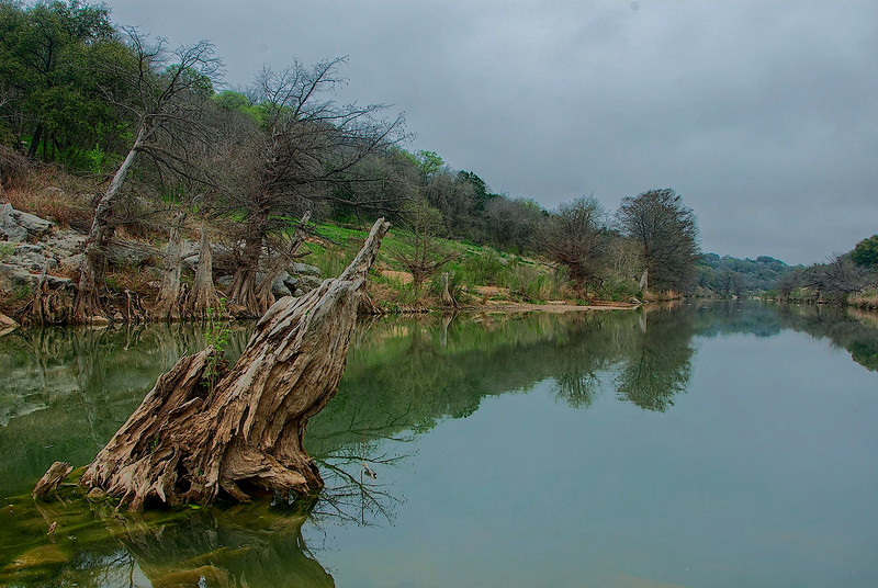4192 Pedernales-River-In-Early-Spring-_v1 copy