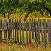 5016 Goat-Fence-At#0-West-Lane-Rd _v1 copy