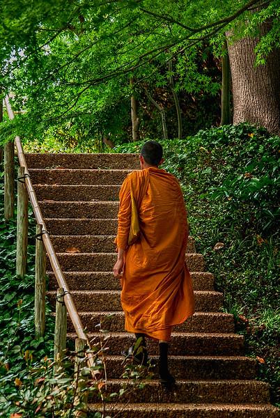 4386 Ascending-To-Buddhahood-_v1
