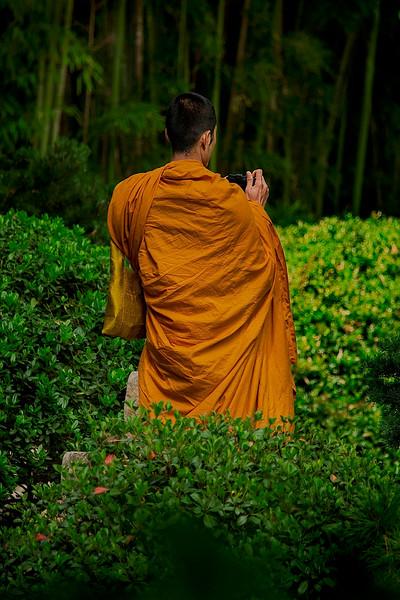 4385 A-Buddhist-Monk-Contemplates-A-Photograph_v1
