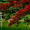 4391 Japanese-Garden_v1