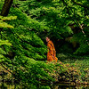 4414 Mindfullness-_v1