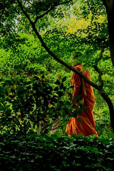 4363 Walking-In-Mindfullness-_v1
