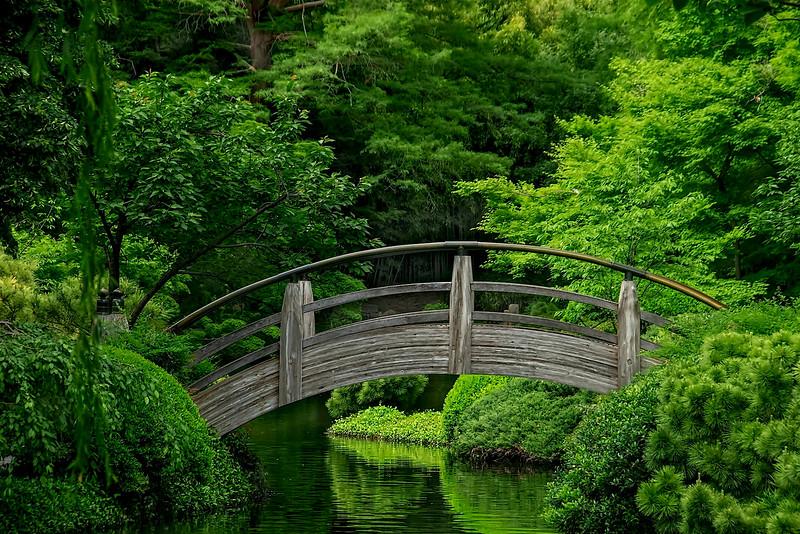 4434 Bridge-In-A-Japanese-Garden-_v1