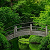 4434 Bridge-In-A-Japanese-Garden-_v1
