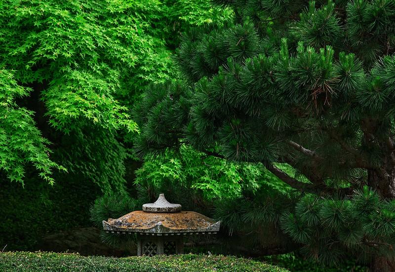 4421 A-Garden-Icon-Defines-The-Space-