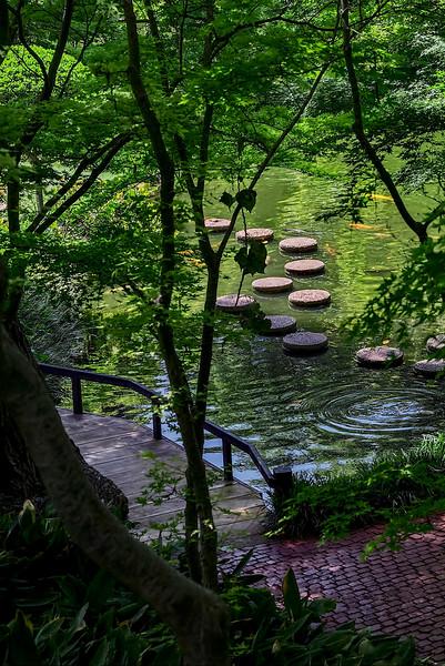 4474 Stepping-Stones-And-Koi-Pond-_v1