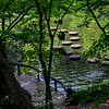 4474 Stepping-Stones-And-Koi-Pond-_v1