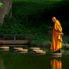 4361 Monk-With-Smartphone-_v1