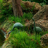 4409 Crane-Sculptures-Celebrate-This-japanese-Garden-_v1