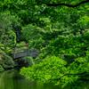 4375 Garden-Bridge-_v1_v1