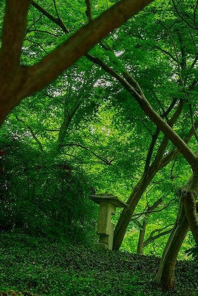 4395 Modern-Pagoda-Enhances-Japanese-Gardens_v1