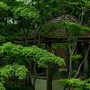 4454 Asian-Gazebo-_v1