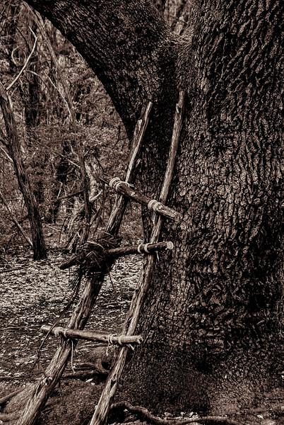 4122 Homespun-Ladder-And-Tree Monotone v1 copy