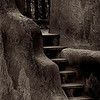 1809 adobe steps_v1 copy