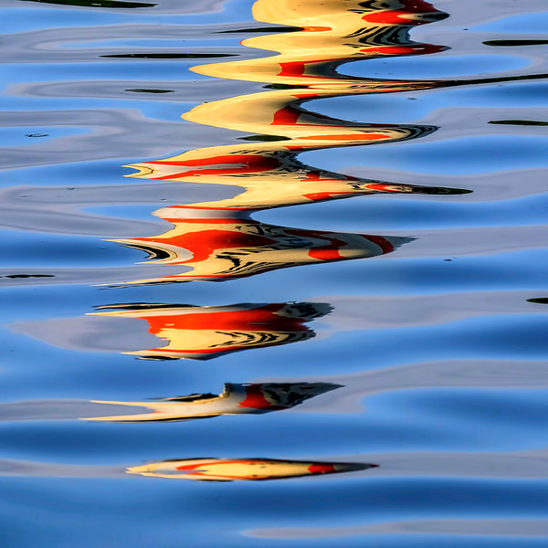 6853 Sinuous Reflection_v1