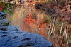 2735-Bull-Creek-Fall-Reflections-
