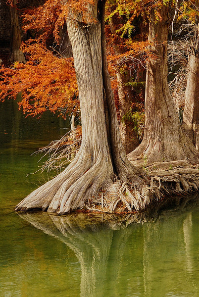 2788-Crystal-Emerald-River-In-Fall--_v1
