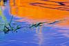 1844-Liquid-Colors-_filtered-tif_v1