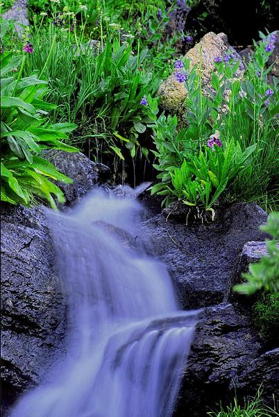 1626-mountain-Meadow-Cascade-_v1