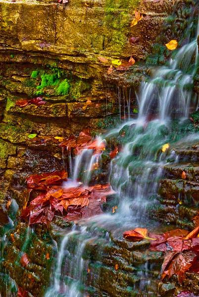 3254 Cascade-On-Autumn-Moss_v1 copy