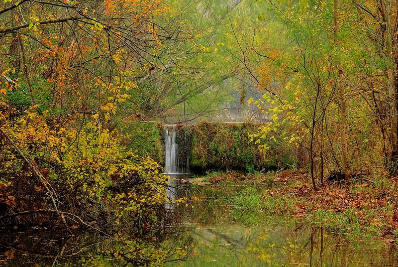 2765-Misty-Autumn-Morning-_v1