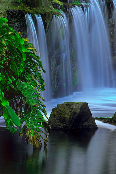 1596-Tropical-Cascade_v1