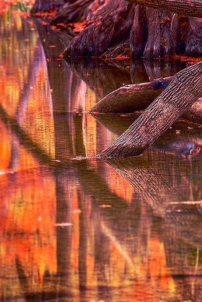 3553 Onion-Creek-Reflections-