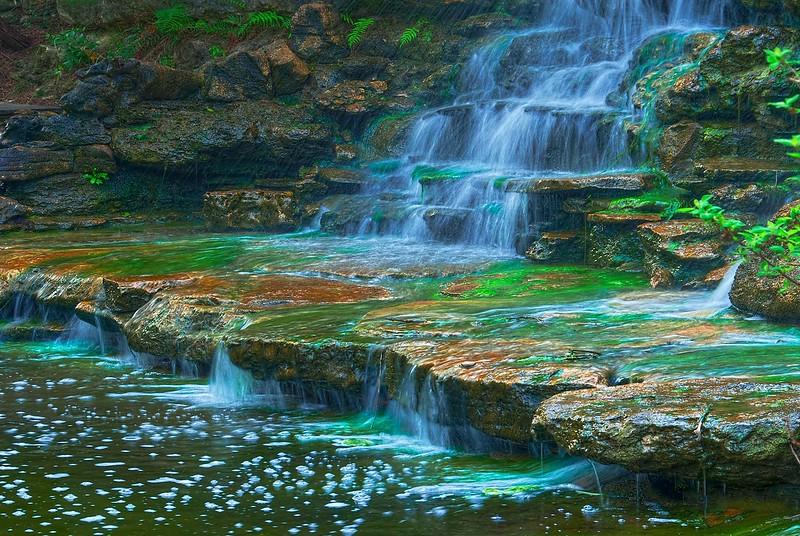 3699 Botanical-Falls-_v1