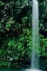 1595-Island-Waterfall-_v1 copy