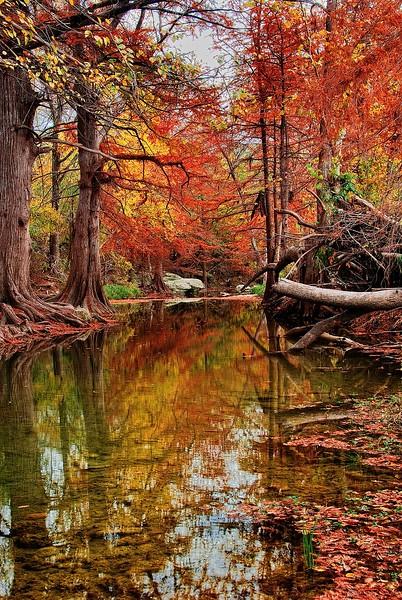 3594 Texas-Autumn-_v1