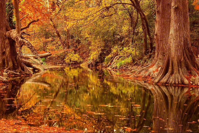 3619 Onion-Creek-,Texas-Hill-Country-_v1