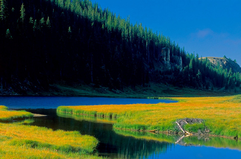 2909-Mountain-Lake-Created-By-Beaver_filtered_v1