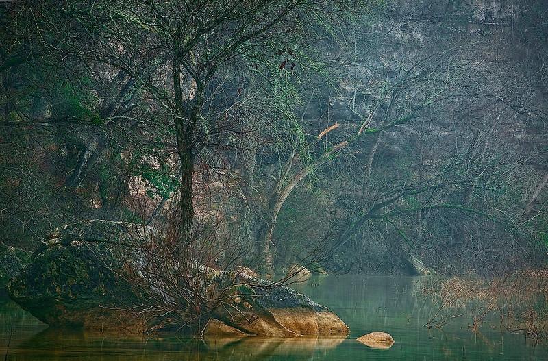 3144-Morning-Mist-Settled-In-The-Creek-Bottom_v1