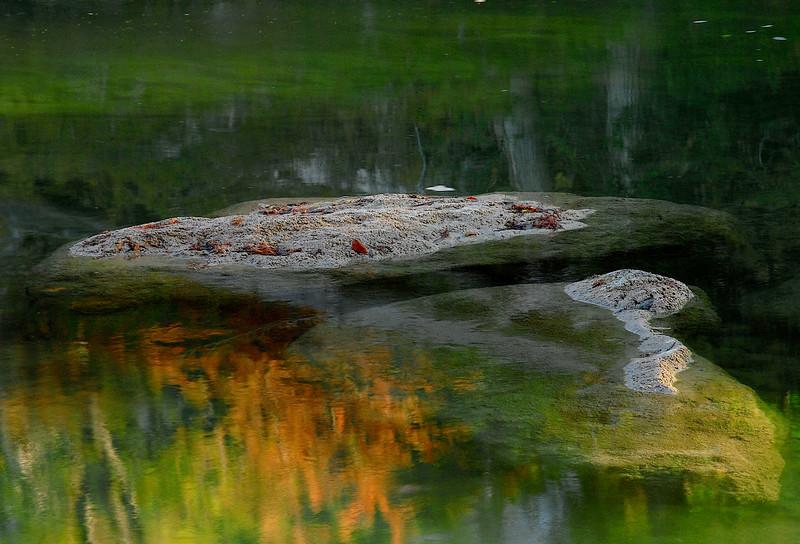 2780-Limestone-Island-In-An-Emerald-Pool-
