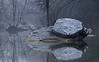 3137-Grey-Day-Creekside-_v1