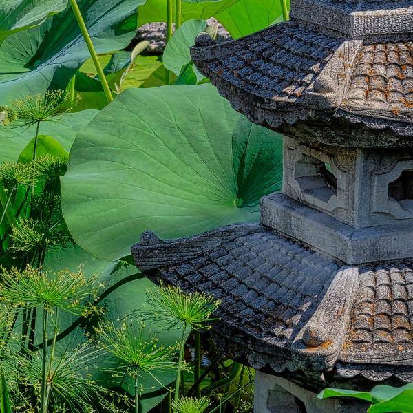 6606 Garden Pagoda _v1 copy 2
