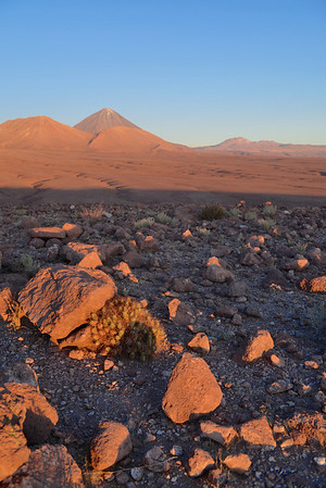 Atacama Desert - Northern Chile