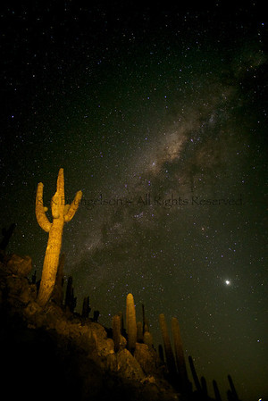 Night sky in the Atacama Desert - Northern Chile