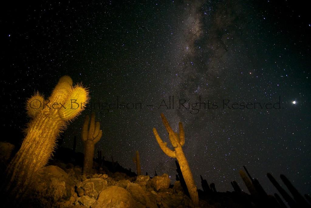 Atacama Desert - Northern Chile