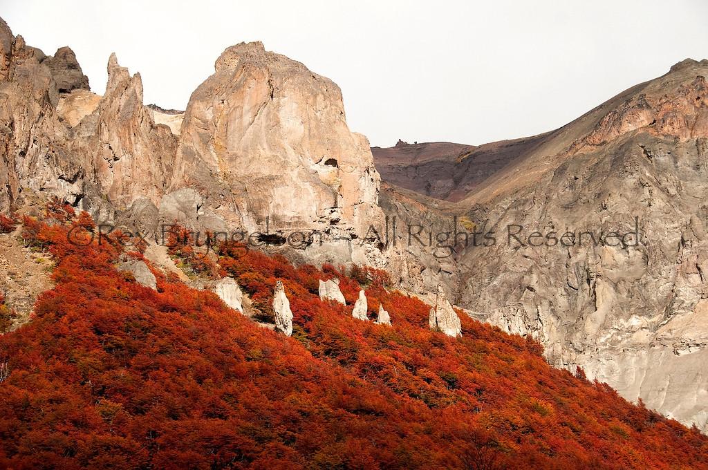 Volcanic formations amidst the autumn foliage in Cerro Castillo Reserve.  Chilean Patagonia.