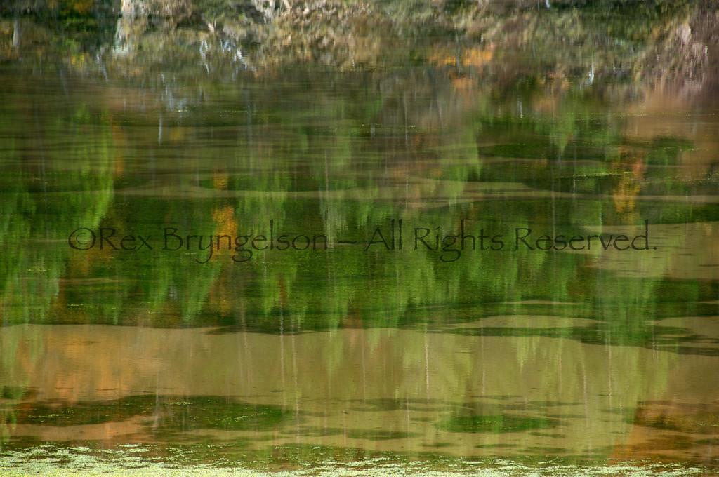 A reflection in the Cerro Castillo Reserve in Chilean Patagonia