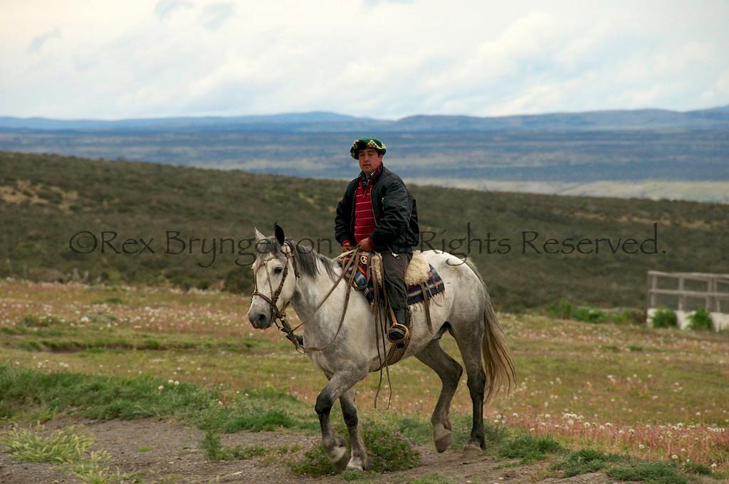 Baqueano at Esrncia Cerro Guido near Torres del Paine.