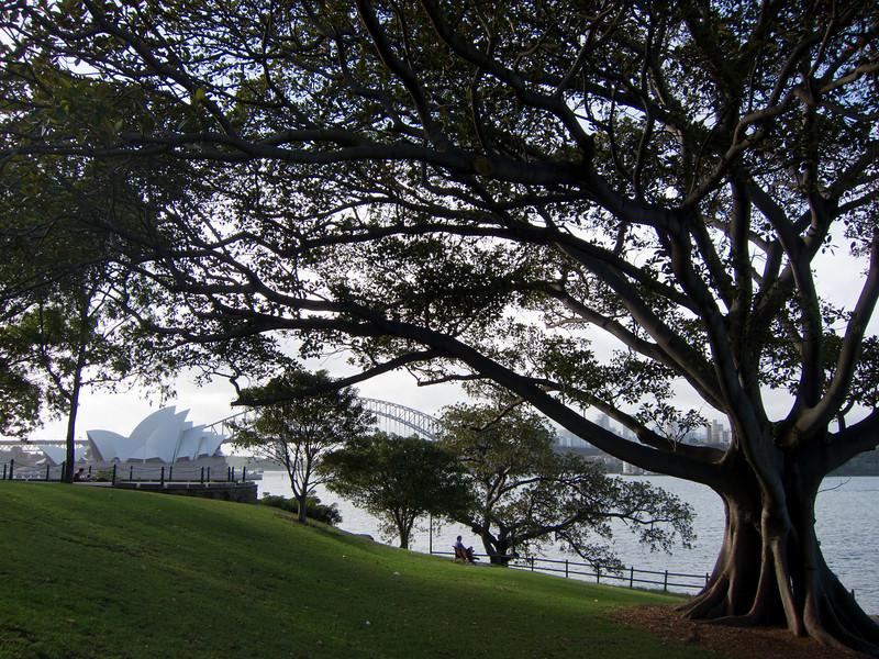 Mrs Macquarie's Point, Sydney.