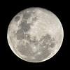 Moon, Gold Coast, Queensland.