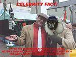 Celebrity Fact Part 2