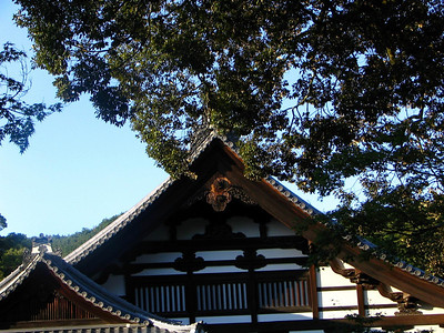Kyoto Osaka 02