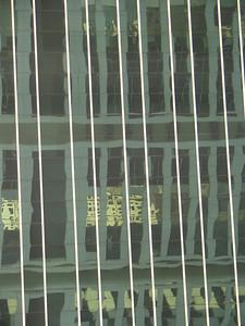 HK jour mars 2005 8 C-Mouton
